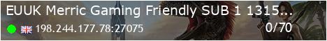 Merric Gaming Subscriber Only Server - (v298.41)